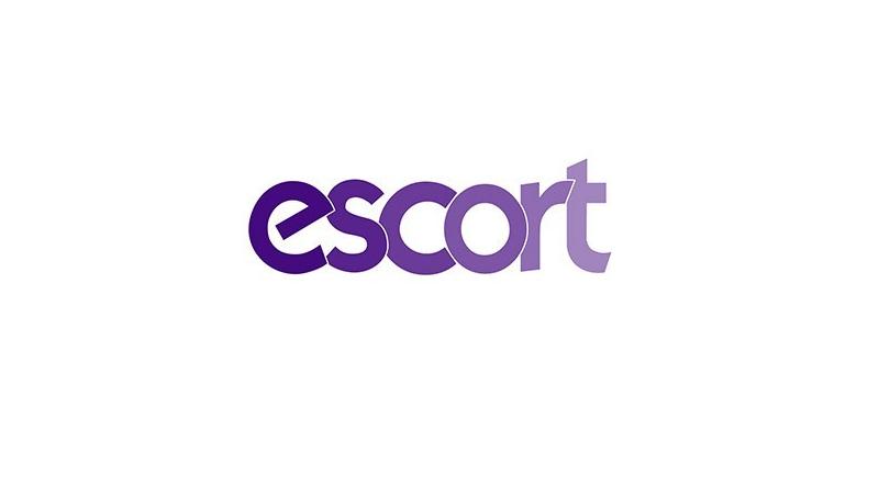 Escom Hisse Net Yorumlar 2020, Escom Hisse Grafik, Escom Borsa Hisse Analiz, Escort Teknoloji Hisse Senedi Borsa